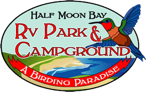 Half Moon Bay RV Park & Campground
