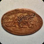 Retired Jaguar, Leopard or Cheetah Big Cat, Micke Grove Zoo, Lodi, CA California