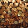 Pick ten coins from Disneyland Resort