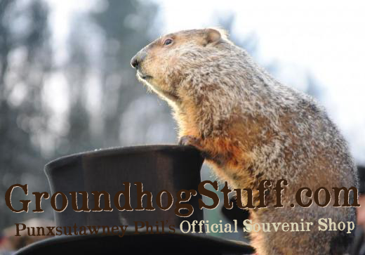 Punxsutawney Phil's Official Souvenir Shop