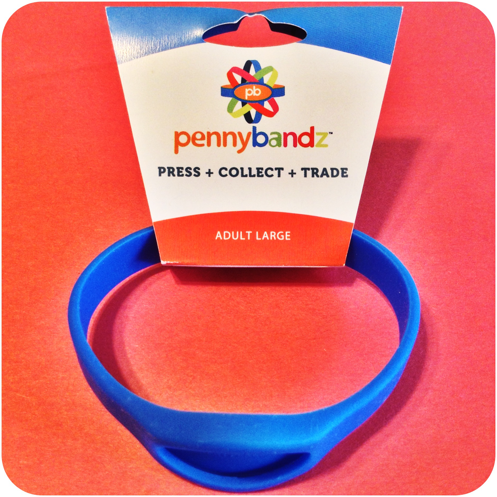 Cool Surfer Blue Pennybandz® Elongated Penny Holder Wristband - Adult Large Size
