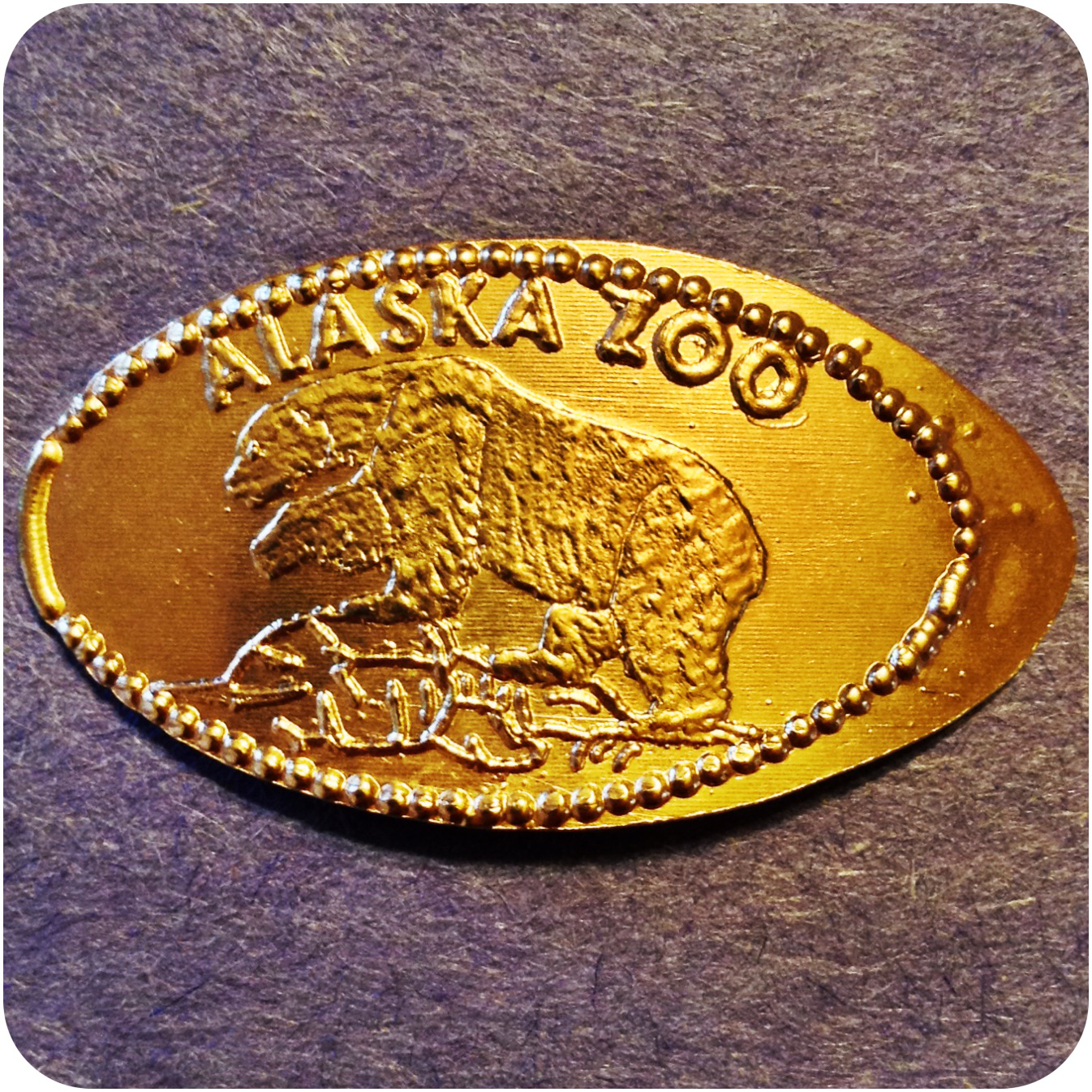 Brown Bear, Alaska Zoo, Anchorage, Alaska Elongated Smashed Pressed Copper Penny
