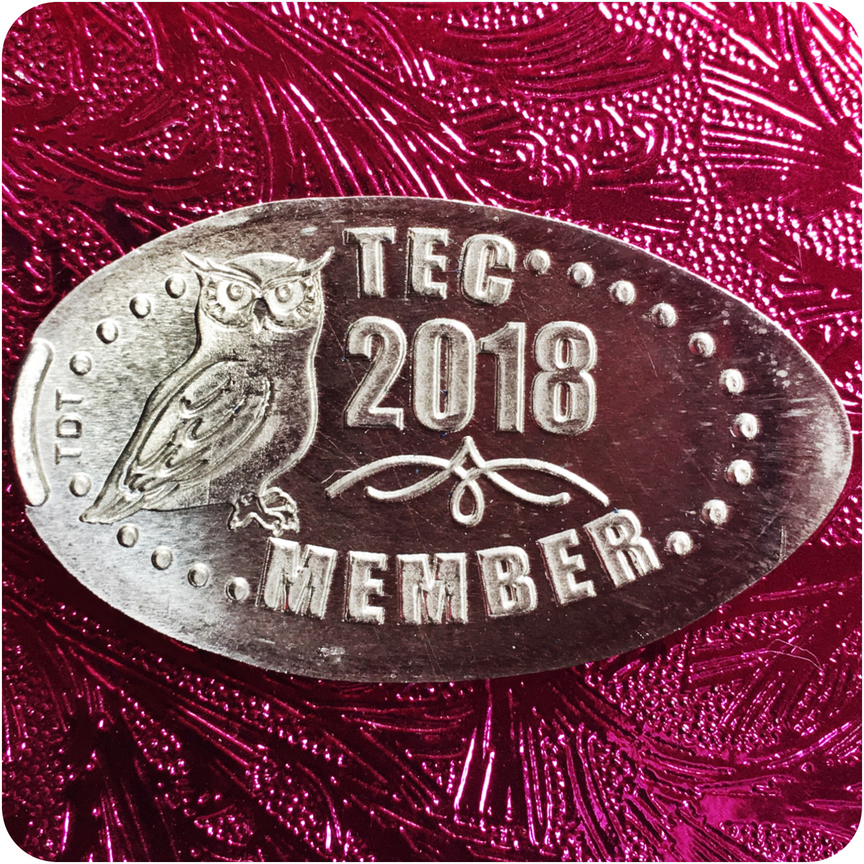 The Elongated Collectors (TEC) Member 2018